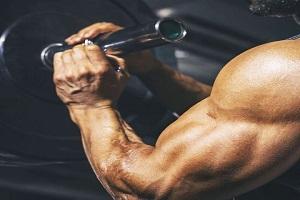 ejercicios-para-biceps